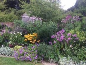 Visit to Mrs Sarah Floyd's garden