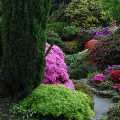 Leonardslee Rock Gardens